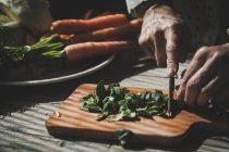Cerrar vista de manos cortar hojas de albahaca en tablero de madera - foto de stock