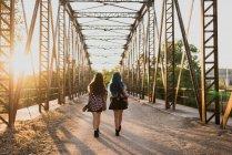 Dos niñas de pie en el puente. - foto de stock