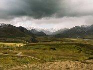 Vert prairie dans les montagnes — Photo de stock