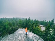 Tourist on rock admiring view of woods — Stock Photo
