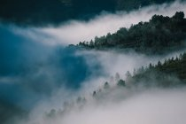 Landscape of wood covered hills among clouds of haze — Stock Photo