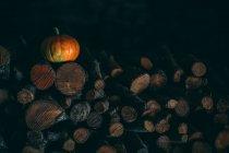 Тыква лежит на куче дров — стоковое фото
