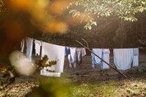 Hinterhof mit Leinen Seile hängen und Trocknen im morgendlichen Sonnenlicht — Stockfoto