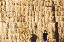 Man in black T-shirt and shorts standing in front of huge wall of haystacks. — Stock Photo