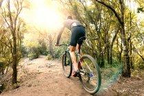 Вид сзади на человека на велосипеде в лесу — стоковое фото