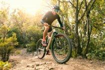 Человек на велосипеде по дорожке в лесу — стоковое фото