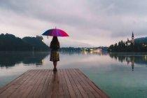 Rückansicht des Frau mit bunten Regenschirm am Pier auf See — Stockfoto