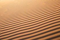 Chiuda sulla vista della collina sabbiosa ondulato nel deserto nella luce del tramonto. — Foto stock