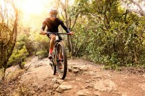 Вид спереди человека, катающегося на велосипеде в освещенном солнцем лесу — стоковое фото