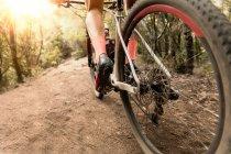 Baixa seção de ciclista andar de bicicleta na floresta no dia ensolarado . — Fotografia de Stock