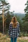 Вид сзади на девушку в клетчатой рубашке, позирующей в лесу — стоковое фото