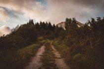 Пейзаж по сельской дороге, идущей в горах под облаками. — стоковое фото