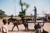 Goree, Сенегалу-6 грудня, 2017:Side вигляд африканським дітям їзда кошик з конем у сільському районі. — стокове фото