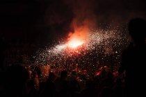 Fuoco d'artificio rosso spruzza su sfondo di cielo nero — Foto stock