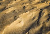 Résumé historique de sable doré formant ridée de surface dans les rayons du soleil — Photo de stock