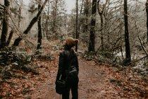 Задній вид жінка ходити в осінній ліс і дивиться в бік — стокове фото