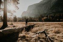 Vue arrière de la personne marchant et se balançant sur le tronc à la prairie des bois — Photo de stock