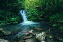 Vue panoramique sur la cascade idyllique à l'intérieur de la forêt — Photo de stock