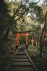 View of pathway with stairs running up through orange sacred gates in oriental garden. — Stock Photo