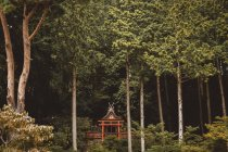 Small traditional Asian building placed in green thick forest. — Stock Photo