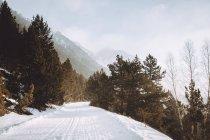 Сільські дороги, що йде уздовж Туманний сніг покриті гори — стокове фото