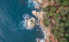 Vistas aéreas de falésias costeiras com árvores no Mediterrâneo — Fotografia de Stock