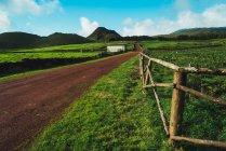 Живописная сельская сцена зеленого поля и холмов — стоковое фото