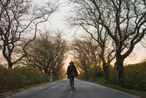 Задній вид жінка, йдучи один на дороги з твердим покриттям в зимовий алея з голі дерева. — стокове фото