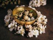 Œufs de caille dans le bol d'or placé dans douces fleurs blanches — Photo de stock