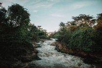 Краєвид насильницької потік брудну воду до природи — стокове фото