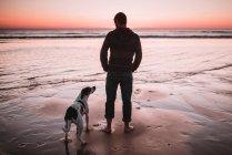 Rückansicht des Mannes am Meeresufer stehend und mit Blick auf Hund neben — Stockfoto