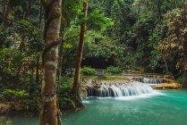 Vista a belle piccole cascate che scorrono — Foto stock