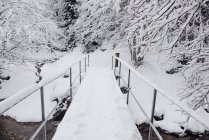 Bridge path covered with snow in winter nature. — Stock Photo