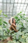 Indian woman in warm hood posing at trees in hothouse. — Stock Photo