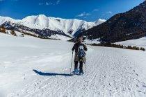 Vue arrière d'homme marchant à travers Prairie neige ensoleillée — Photo de stock