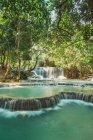 Идиллический вид на небольшие водопады, текущие в джунглях — стоковое фото