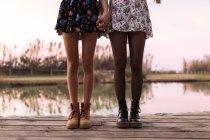 Низький розділ жінок, стоячи на дерев'яний міст і тримаючись за руки — стокове фото