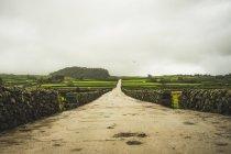 Mostra di strada sporca lungo recinti di pietra fatte in giornata nuvolosa — Foto stock