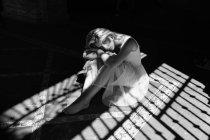 Femme en robe blanche légère, assis sur un sol carrelé dans l'ombre des stores et regardant la caméra. — Photo de stock
