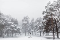 Woman with umbrella standing in winter — Stock Photo