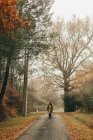 Woman walking on road in autumn woods — Stock Photo