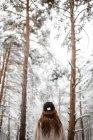 Жінки носять шапки в засніжений ліс — стокове фото