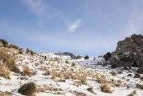Schneehang im Winter mit blauem Himmel und Wanderer im Hintergrund — Stockfoto