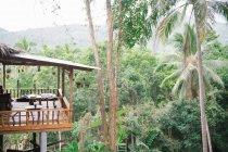 Terraza de madera en selva - foto de stock