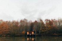 Жінка сидить на ганку дерев'яна хата — стокове фото