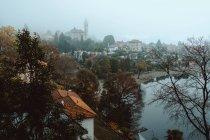 Місто з голі дерева та ставок — стокове фото