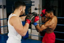 Men training and boxing — Stock Photo