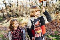 Junge hält einen Ast mit seiner Schwester auf dem Land — Stockfoto