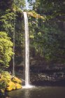 Wasserfall im majestätischen mexikanischen Dschungel von Klippe fallen — Stockfoto