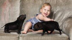 Симпатичный маленький мальчик сидит с двумя маленькими черными поросятами на диване — стоковое фото